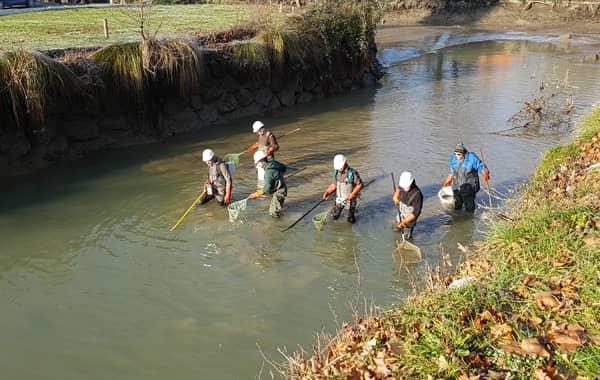 Equipe de la fédération en pêche électrique